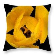 This Yellow Tulip Throw Pillow
