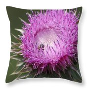 Thistle And The Bee Throw Pillow