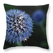 Thistle Bloom 2 Throw Pillow