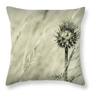 Thistle - Dreamers Garden Series Throw Pillow