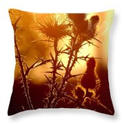Thistle Edge Glow Throw Pillow