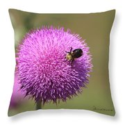 Thistle And A Bee Throw Pillow