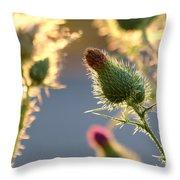 Thistle Garden Throw Pillow
