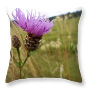 Thistle In A Swiss Field Throw Pillow