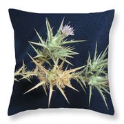 Thistle Of Israel Throw Pillow