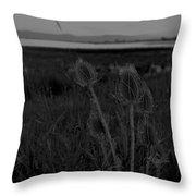 Thistles At Ninepipes Throw Pillow