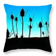 Thistles At Sunset Throw Pillow