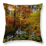 Thoreau's Pride Throw Pillow