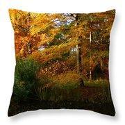 Thoreau's Splendour Throw Pillow