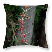 Thorns And Blooms Throw Pillow