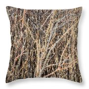 Thorny Wall Throw Pillow