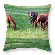 Thoroughbreds Throw Pillow