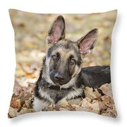 Those Ears Throw Pillow