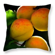 Those Glowing Golden Apricots Throw Pillow by Susanne Still