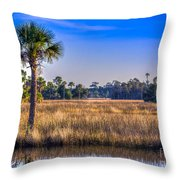 Those Quiet Sounds Throw Pillow by Marvin Spates