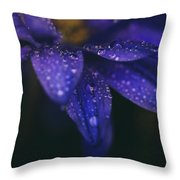 Those Tears You Cry Throw Pillow