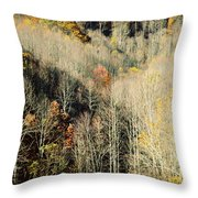 Those West Virginia Hills Throw Pillow
