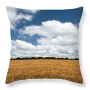 Thoughts Of A Wheatfield Throw Pillow