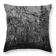 Thousands Of Shimmering Raindrops - Monochrome Throw Pillow