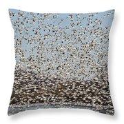 Thousands Of Snow Geese Throw Pillow
