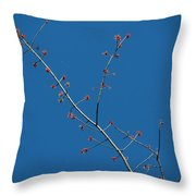 Threads And Buds Throw Pillow