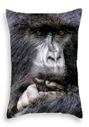 Threatened By Poachers Throw Pillow