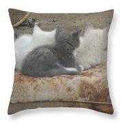 Three Amigos Throw Pillow