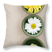 Three Throw Pillow by Anne Gilbert