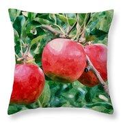 Three Apples On Tree Throw Pillow