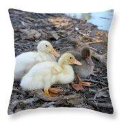 Three Baby Ducks Throw Pillow