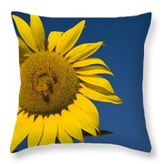 Three Bees And A Sunflower Throw Pillow