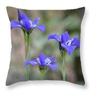 Three Blue Iris Throw Pillow