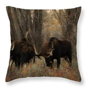 Three Bull Moose Sparring Throw Pillow