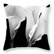 Three Calla Lilies In Black And White Throw Pillow