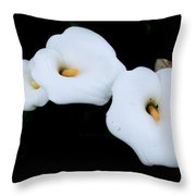 Three Calla Lilies Throw Pillow