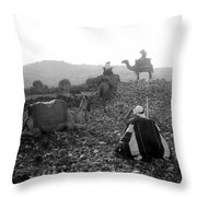 Three Camels Throw Pillow
