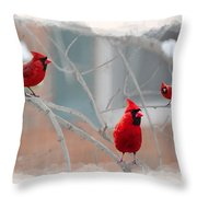Three Cardinals In A Tree Throw Pillow
