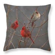 Three Cardinals Throw Pillow