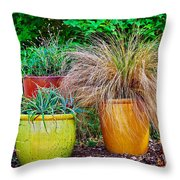 Three Colorful Pots Throw Pillow