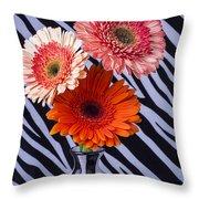 Three Daises In Striped Vase Throw Pillow