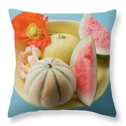 Three Different Melons In Bowl (overhead View) Throw Pillow