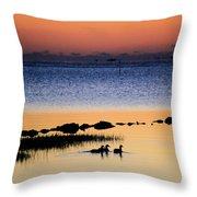 Three Ducks At Dawn Throw Pillow