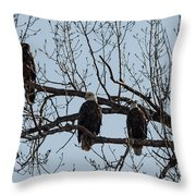 Three Eagles In Tree Throw Pillow