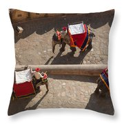 Three Elephants At Amber Fort Throw Pillow