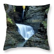 Three Falls In Watkins Glen Throw Pillow