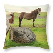 There Were Three Horsegirls And One Big Gray Stone  Throw Pillow