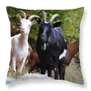 Three Goats Throw Pillow