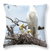 Three Great Egret Chicks In Nest Throw Pillow by Carol Groenen