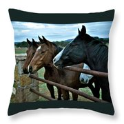 Three Horses Waiting For Carrots Throw Pillow