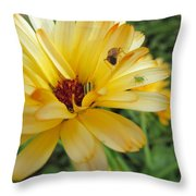 Three Insects And A Flower Throw Pillow